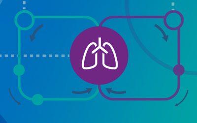 Will organ perfusion transform transplantation?