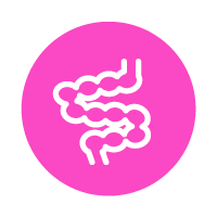 magenta circle with line icon of intestines