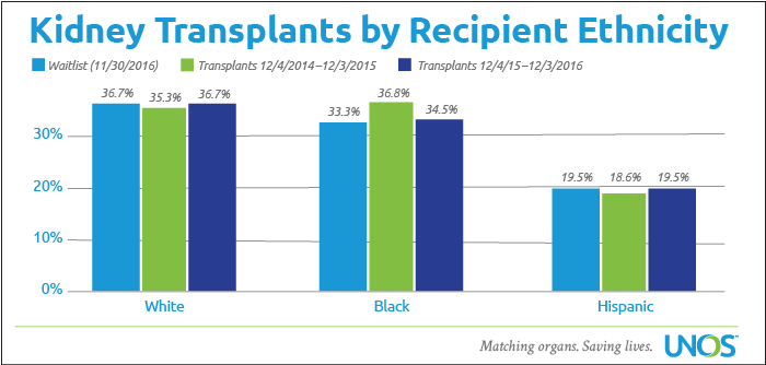 Kidney transplants by recipient ethnicity