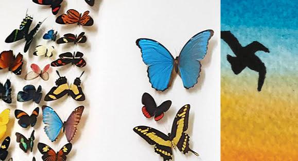 La Coleur de la Vie - Gallery at UNOS Exhibit Sept 2017