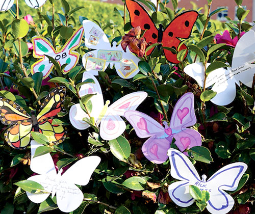 Butterflies painted by community
